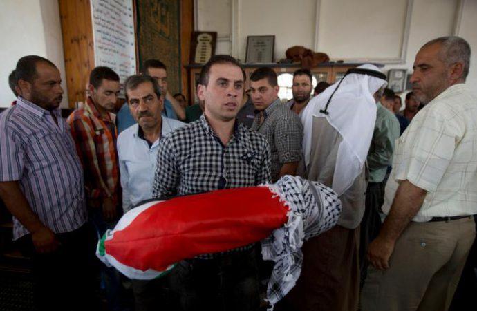 Δήλωση του Παγκόσμιου Συμβουλίου Ειρήνης για τη δολοφονία του βρέφους κοντά στη Ναμπλούς στην Παλαιστίνη
