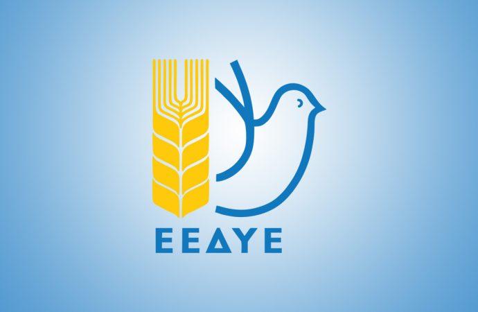 H ΕΕΔΥΕ καταδικάζει την «οριστική» απαγόρευση της δράσης της Επιτροπής Ειρήνης της Τουρκίας από τις τουρκικές αρχές